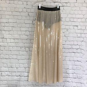 Sequin sheer skirt (NWT)